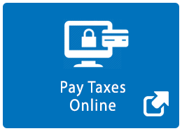 Pay Taxes Online Icon